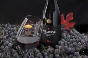 Allegrini Amarone della Valpolicella wine